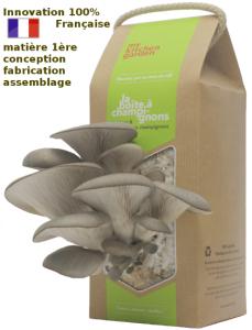 boite à champignons